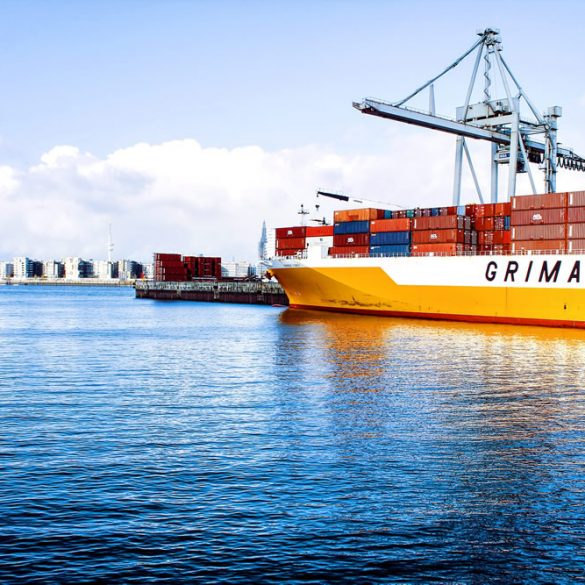 Exclusive Mandate of the Tanzania Shipping Agencies Corporation